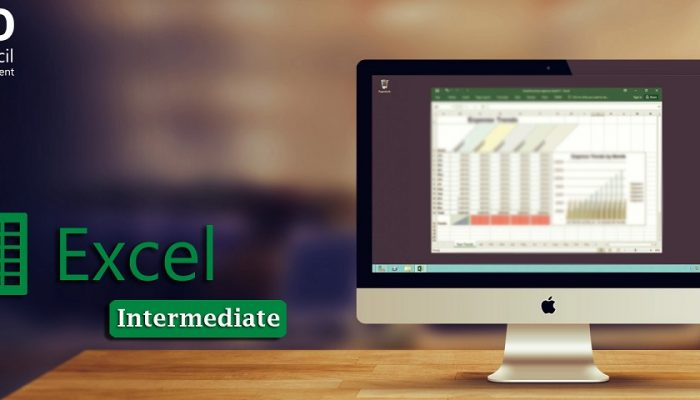 excel intermediate online